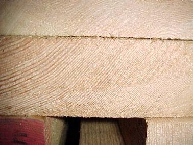 oregon pine aus arnheim am niederrhein. Black Bedroom Furniture Sets. Home Design Ideas