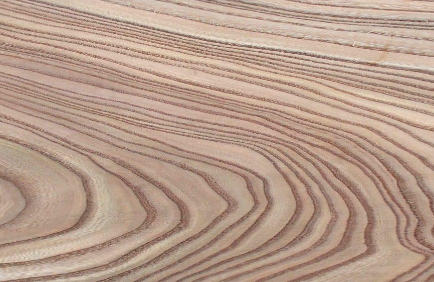 Rüster Holz rüster ulme holz einfach aus arnheim am niederrhein