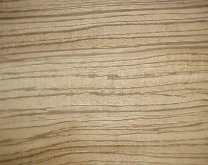zebrano zingana zebrawood