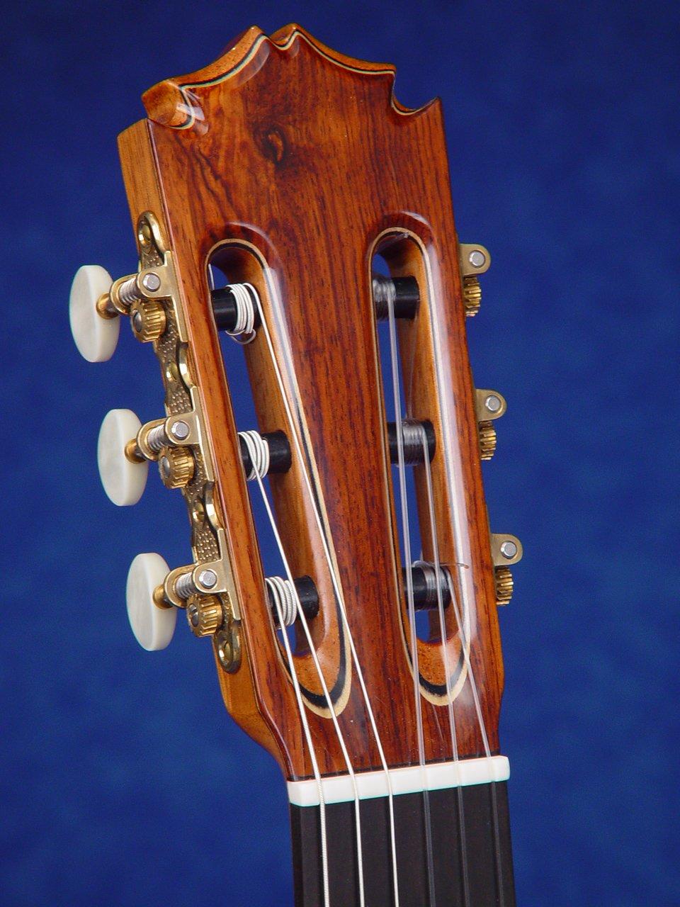 gitaar snaren vervangen elektrisch